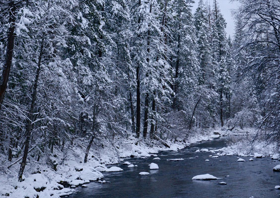 Late Snowfall's Impact on Dissolved Oxygen Levels